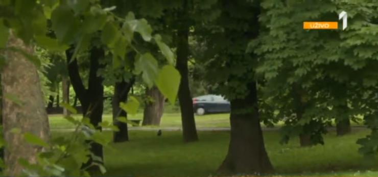 Automobili prolaze kroz Topčiderski park da bi izbegli gužvu