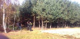W lesie znaleziono ciała dwóch zaginionych 17-latek. To było samobójstwo?