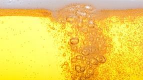 Jak zostać piwnym ekspertem?
