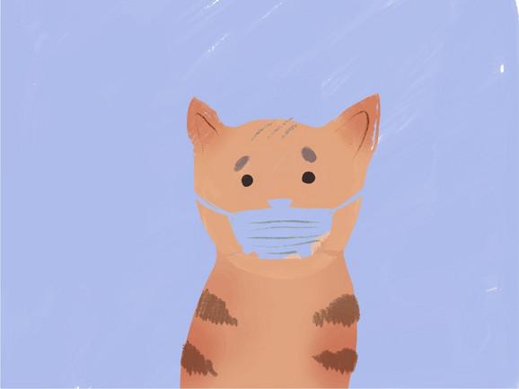 Bolje je obratiti pažnju na higijenu ljubimca nego ga staviti u izolaciju