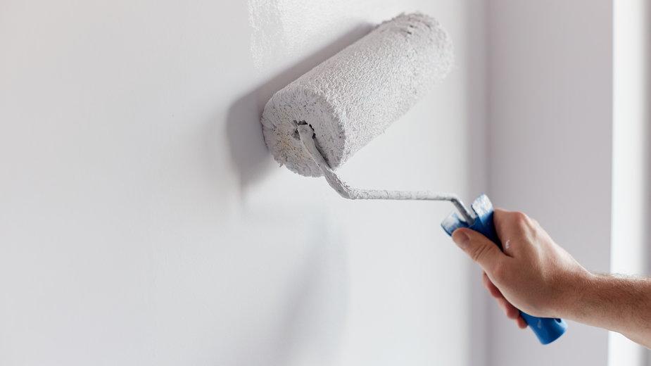 Jak błyskawicznie pomalować ściany?