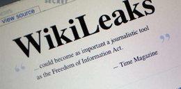 Dokumenty z WikiLeaks publikują media