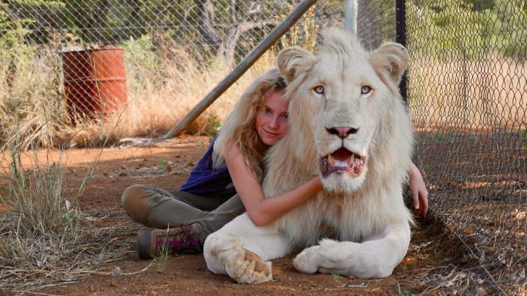 mija i beli lav