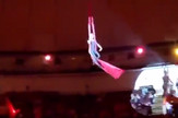 cirkus pad