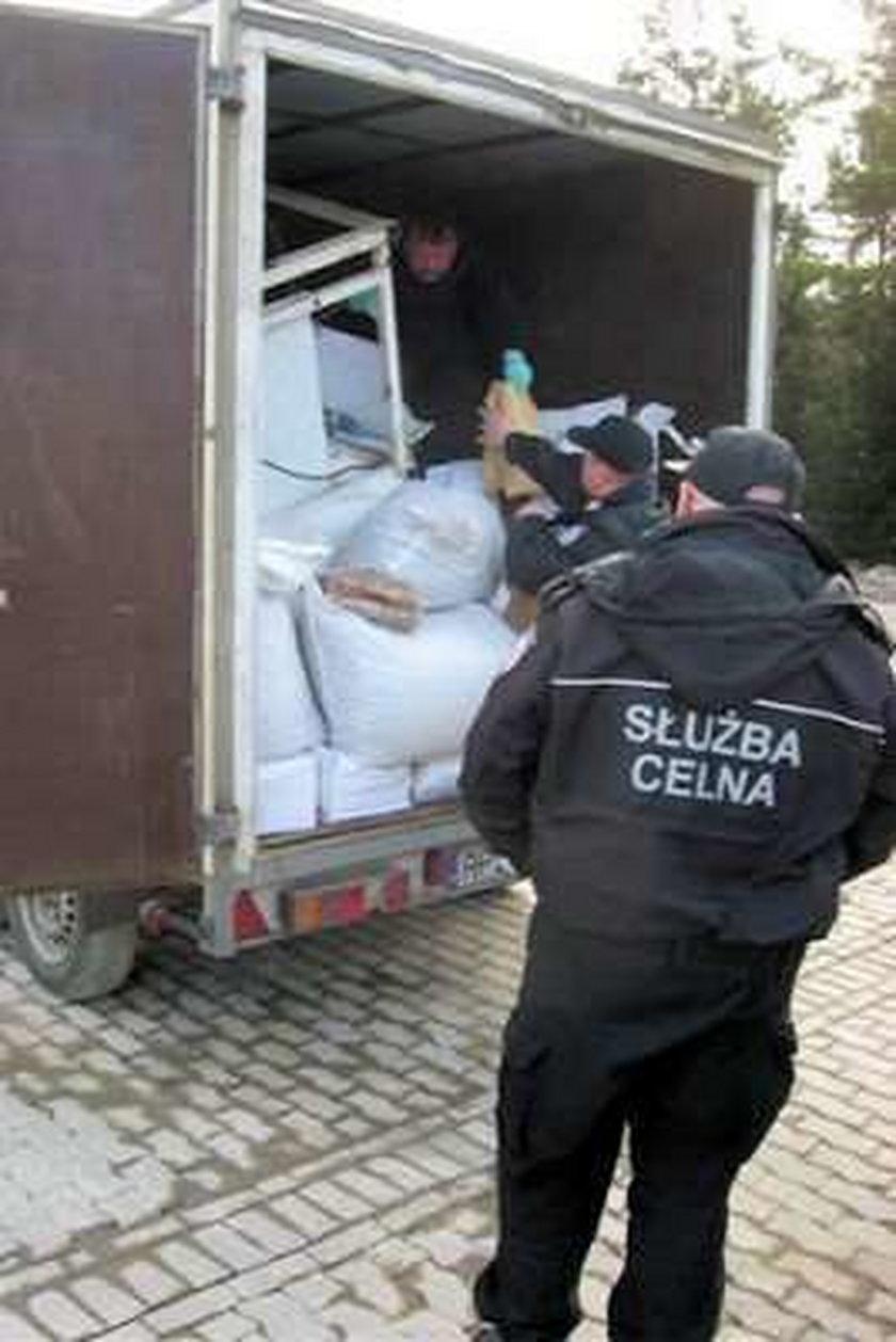 6 ton orzechów z robalami miało trafić na polskie stoły?