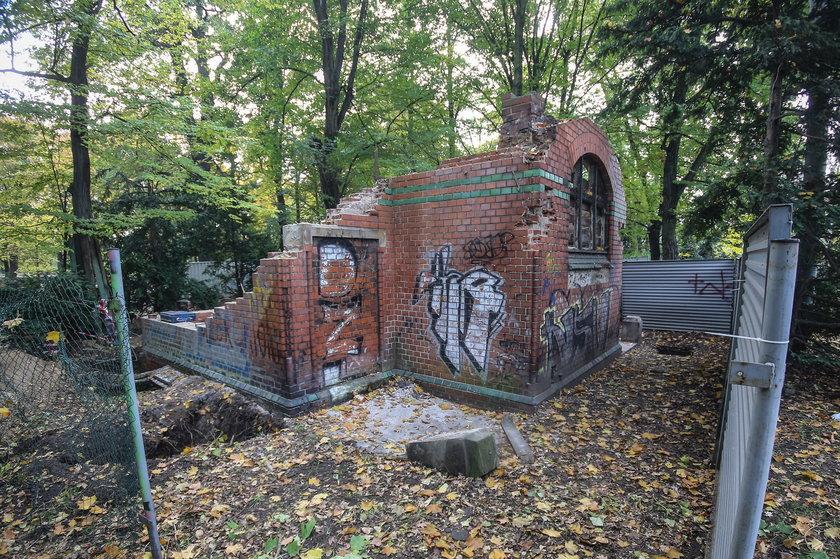 Ruiny w parku