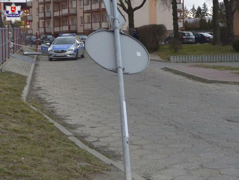 """Skosiła lampę i znak drogowy. 39-latka """"parkowała"""" po pijaku"""
