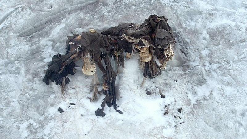 Szczątki trzech austriackich żołnierzy znalezione na lodowcu w pobliżu szczytu San Matteo w roku 2004