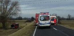 Pod Puławami bus wypadł z drogi. 10 osób rannych