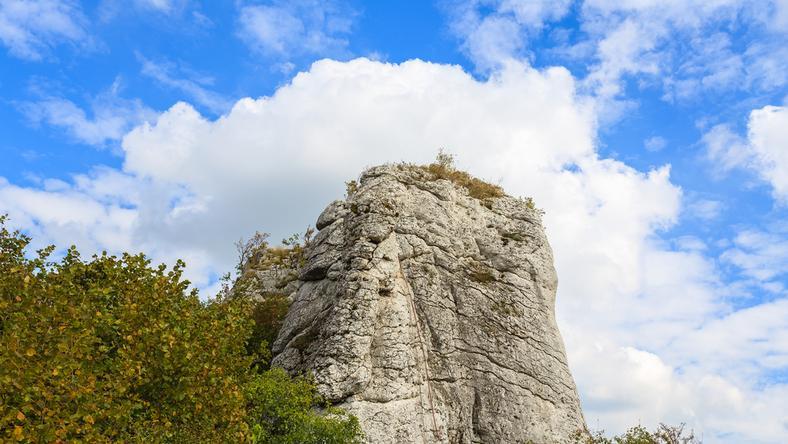 Skała w pobliżu Jerzmanowic