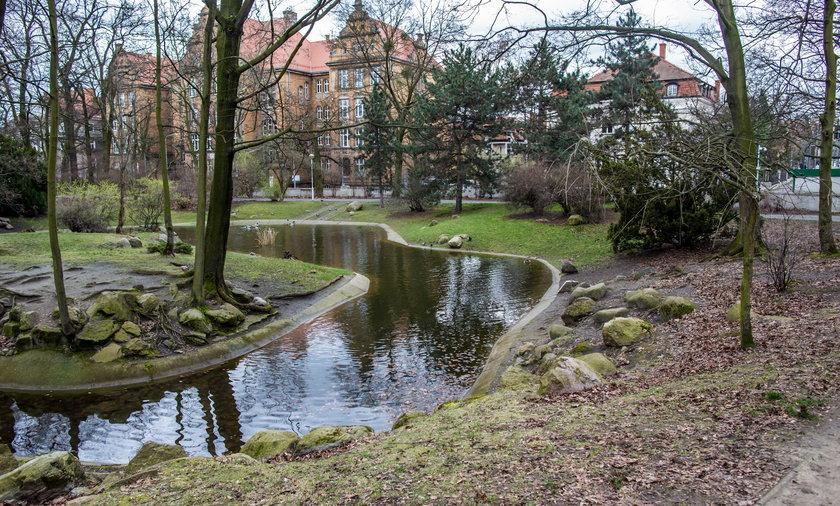 Park Wilsona w Poznaniu.