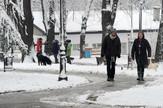 sneg foto MIlan Ilic