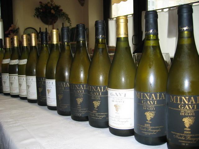 Vino Gavi di Gavi iz Pijemonta