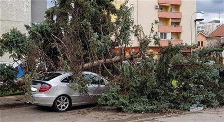 olujni vetar banjaluka stabla