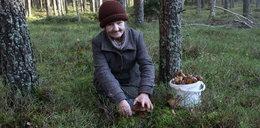 Jest zimno, a grzyby rosną!
