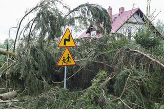 Tchórzewski: 13 tys. odbiorców bez prądu