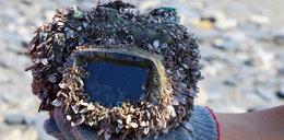 Zgubiła aparat w morzu. Znaleźli go po 2,5 roku. Ujawnili zdjęcia!