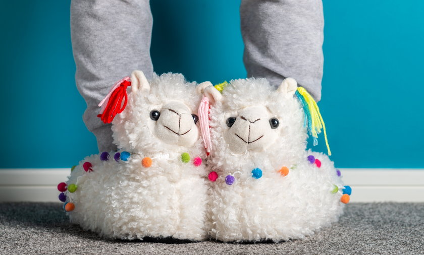 Young girl is wearing cute soft 3d llama slippers