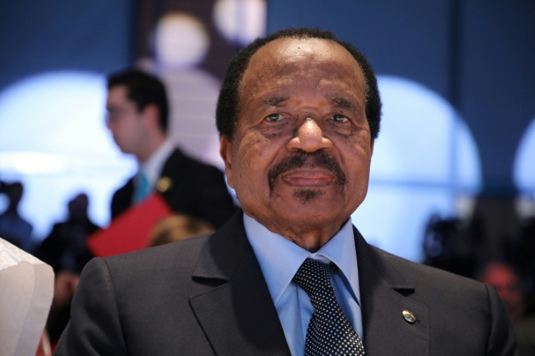 Cameroon President Biya has been accused of using force on protesters (AFP)