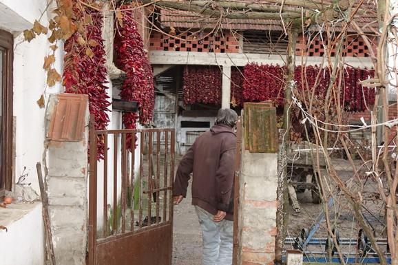Selo živi od paprike