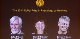 Przyznano Nobla z medycyny za badania nad mózgiem