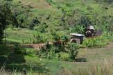 papua nova gvineja02
