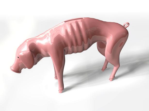 Wychudzona świnka