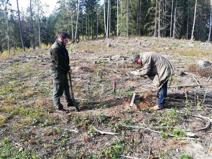 Niezwykłe odkrycie w podlaskim lesie.