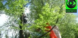 Paralotniarz zawisł na drzewie. Z ośmiu metrów ściągnęli go strażacy