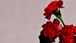 """JOHN LEGEND - """"Love in the Future"""""""