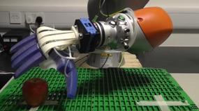 Robot do pakowania owoców