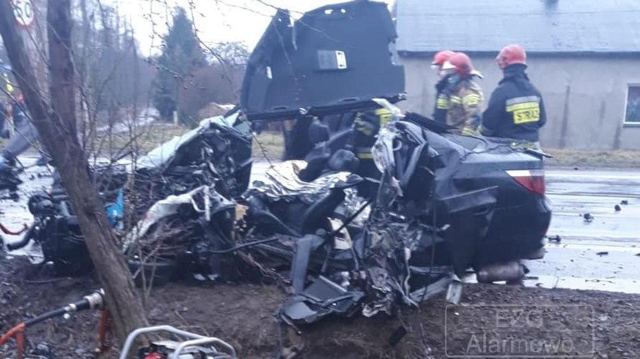 Wypadek Aleksandria/Słowik