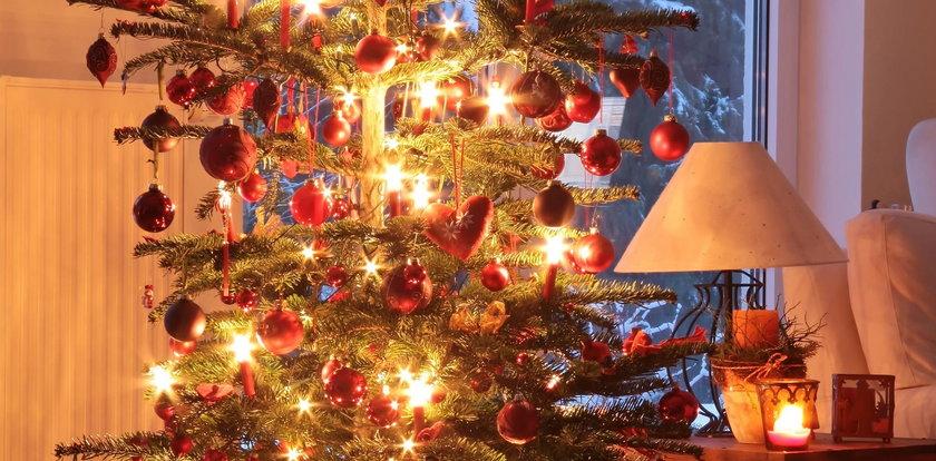 Syndrom drzewka świątecznego. To może ci grozić przez choinkę