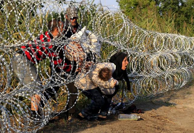 Migranti se provlače kroz bodljikavu žicu