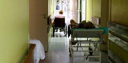Eksperci będą walczyć z groźną bakterią w szpitalach