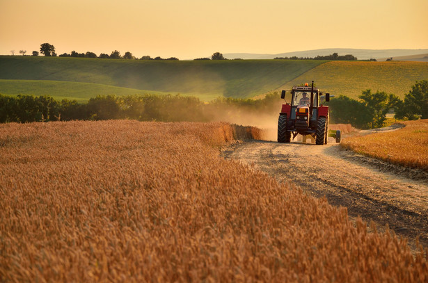 Płatność dla działki rolnej wchodzącej w skład Zasobu Własności Rolnej Skarbu Państwa przysługuje wyłącznie, gdy rolnik ma do niej tytuł prawny.