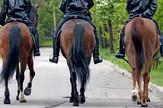 konji policija