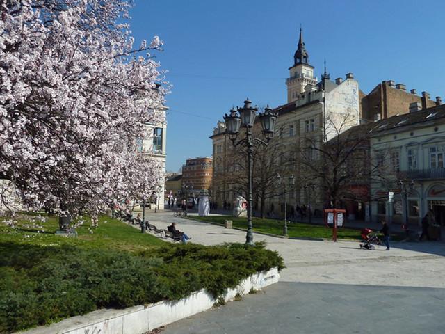 Foto:Snežana Lukić
