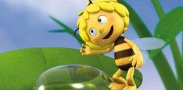 Pszczółka Maja powraca! Trochę się zmieniła...