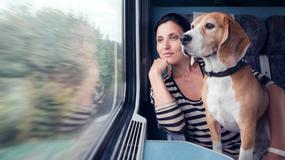 Koleje Śląskie planują pociągi do Zakopanego
