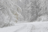 Sneg, foto B. Bojović