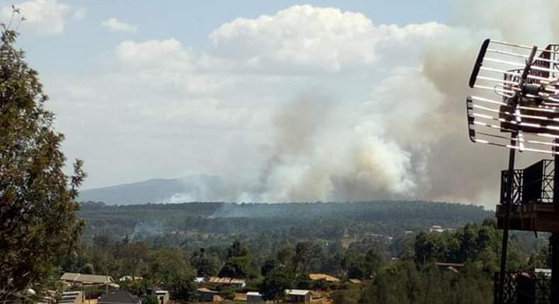 A section of Ngong Forest on fire (Twitter)