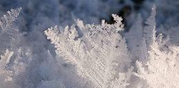 Przed nami mroźny i śnieżny weekend