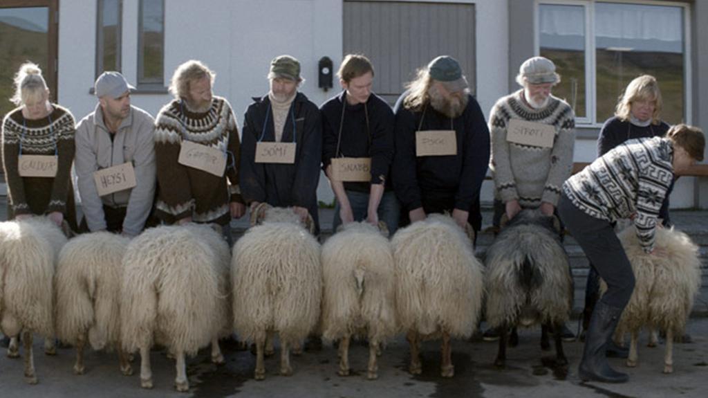 Barany. Islandzka opowieść - NAPISY DLA NIESŁYSZĄCYCH