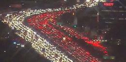 Tak Los Angeles uczciło polskie święto? Wielu się na to nabrało!