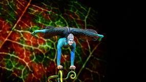 Cirque du Soleil w Polsce: dodatkowy spektakl w Krakowie