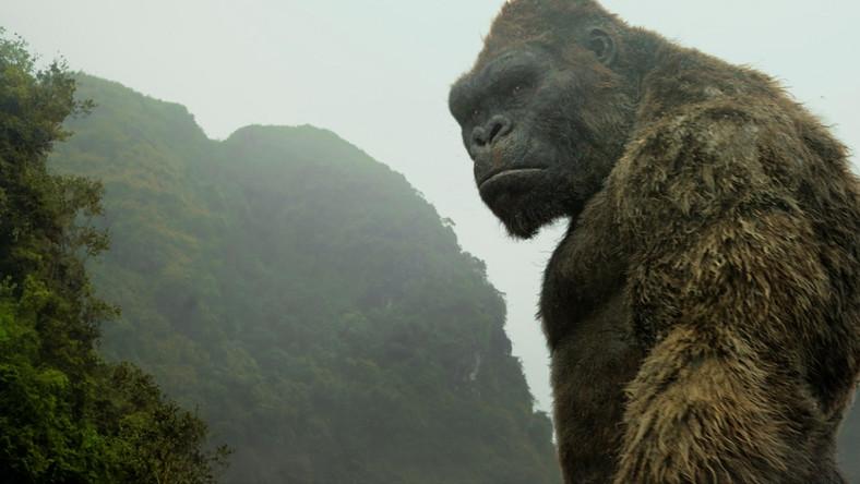 """""""Kong: Wyspa Czaszki"""" od piątku, 10 marca w kinach"""