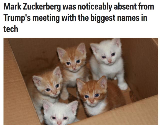 businessinsider.com: Mark Zuckerberg był nieobecny na spotkaniu z największymi nazwiskami świata technologii