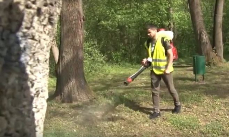 zaprasivanje komarci