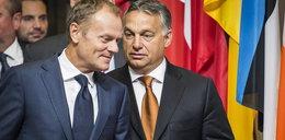 Polska i Węgry ograli Włochów